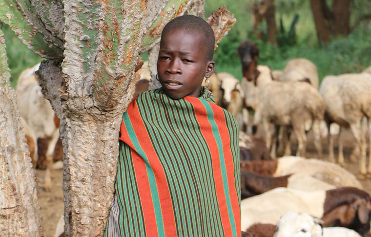 Small child wrapped in a cloth with his goats