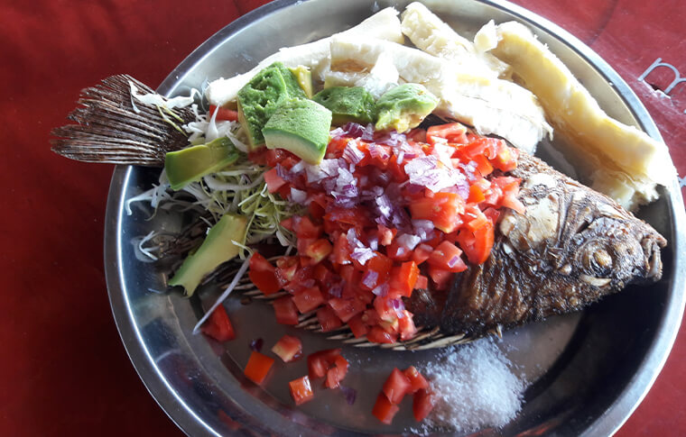 Plate of fish with tomato salsa and green salad
